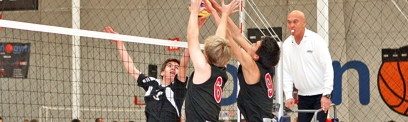 Volleyball Hero